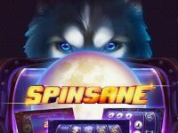 Spinsane Slot - Release date 11.06.2019