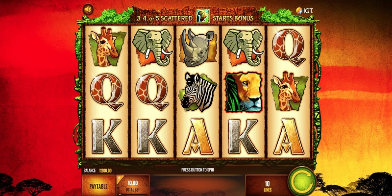 The Wild Life Slot Review
